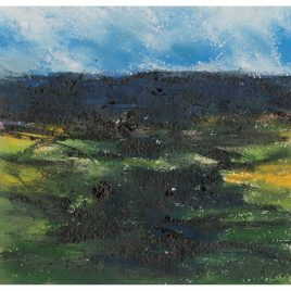 C2370 Sunlit Moor – Roger Large