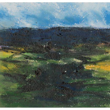 C2370 Sunlit Moor – Copy