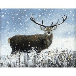 C2678 Standing Stag