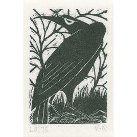 C2935 Raven 20/75