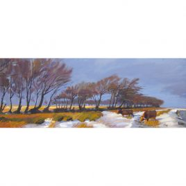 C2806 Winter on Exmoor – Neville Cox