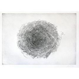 C3159 Nest 3/12