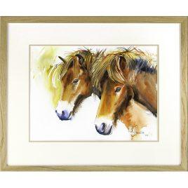 C2396 Exmoor Ponies