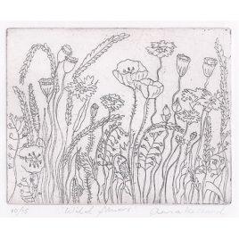 C2990 Wild Flowers 11/75