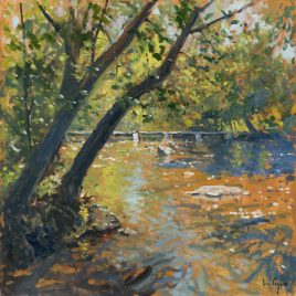 C1722 Riverside Trees at Tarr Steps – Ian Cryer