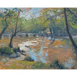 C1748 River Barle at Tarr Steps – Ian Cryer