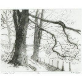 C1780 Winter Trees 8/75 – Ann le Bas