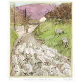 C1794 Exmoor Memories, Moving the Flock – Hilary Adair