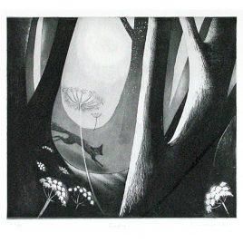 C2325 Foxfire 79/100 – Flora McLachlan