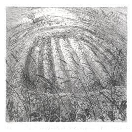 C2310 Small Hayfields, Skylark Singing  28/150 – Flora McLachlan