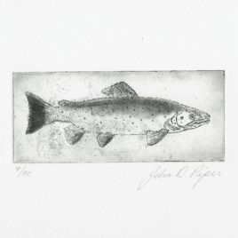 C3142 Brown Trout 7/90 – John Douglas Piper