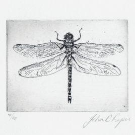 C3146 Dragonfly 7/90