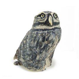 C3516 Little Owl