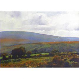 C1555 Distant Road Across the Moor
