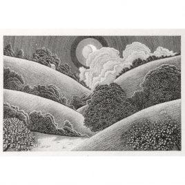 C3838 Camel Valley – Cornwall 11/90 – Brian Hanscomb