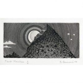 C3841 Flower Mountain 16/95 – Brian Hanscomb