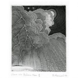 C3842 Storm over Bodmin Moor 20/95