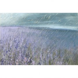 C3073 Overcast Moorland