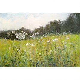 C4138 Cow Parsley and Pale Grass