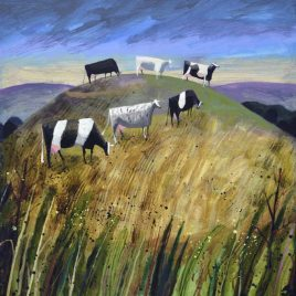 X3920 Hill Cows