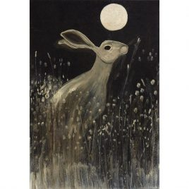 DH02 Night-time Hare