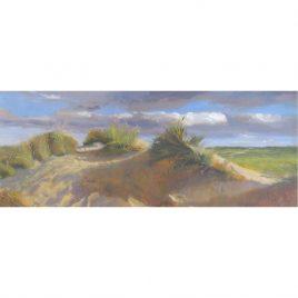 C4479 Sand Dunes, Minehead – Neville Cox