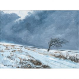 C4505 Winter Tree, Exmoor