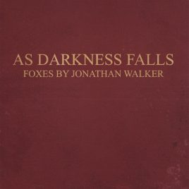 "PRE-ORDER ""AS DARKNESS FALLS"" Foxes by Jonathan Walker"
