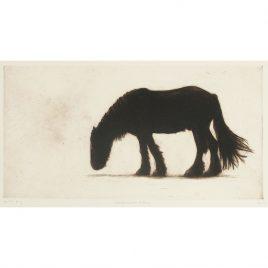 C4673 Northumberland Horse