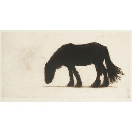 C4673 Northumberland Horse 61x30cm – Copy