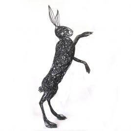 C4477 Hare