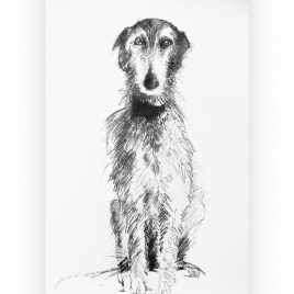 C5107 Lurcher 1/9 – Sally Muir