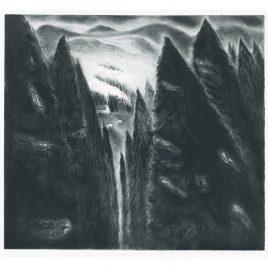 C4895 Song of the Nightjars 4/100 – Flora McLachlan