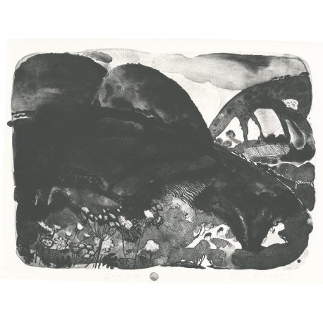 C4897 Dark Hills – Copy