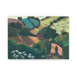 'Afternoon Shadows' by Sue Onley Greetings Card