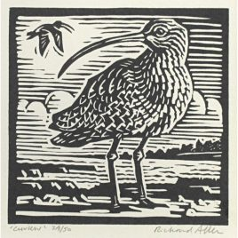 C5297 Curlew 24/50 – Richard Allen