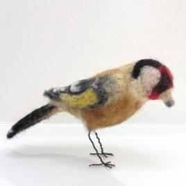 C5309 Goldfinch – Sue Clements