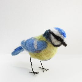 C5312 Blue Tit – Sue Clements