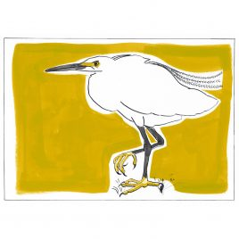 C5431 Little Egret – Miranda Johnston