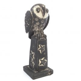 C5633 Starry Owl – Jo Lucksted