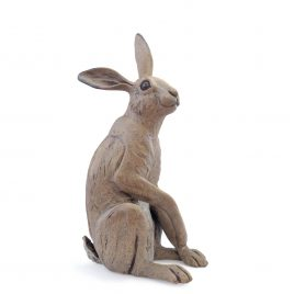 C5677 Small Hare – Pippa Hill