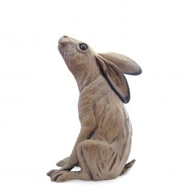C5679 Moongazing Hare – Pippa Hill