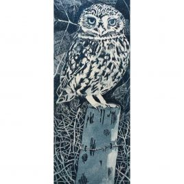 C5597 Little Owl on a Post – Janis Goodman