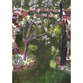 C5868 Apple Blossom – Rachel Waldock