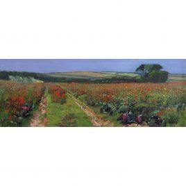 C6042 Cabbage Field- Neville Cox