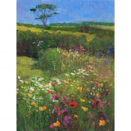 C6069 Wild Flower Meadow – Neville Cox
