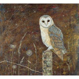 X4543  Barn Owl – Anne Mortimer RMS SBA