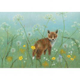 X3895 Mayday Fox Cub – Anne Mortimer RMS SBA
