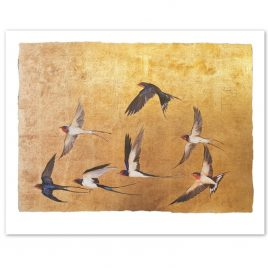 X4889 Golden Flight of Swallows – Jackie Morris