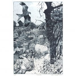 C6331 Plotting – Janis Goodman